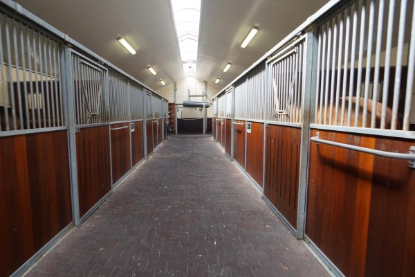 Estate with professional horse accommodation